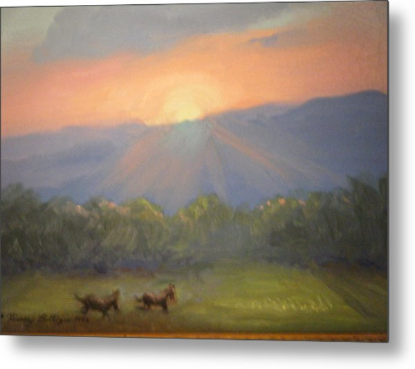 Horses Running Free Metal Print by Patricia Kimsey Bollinger