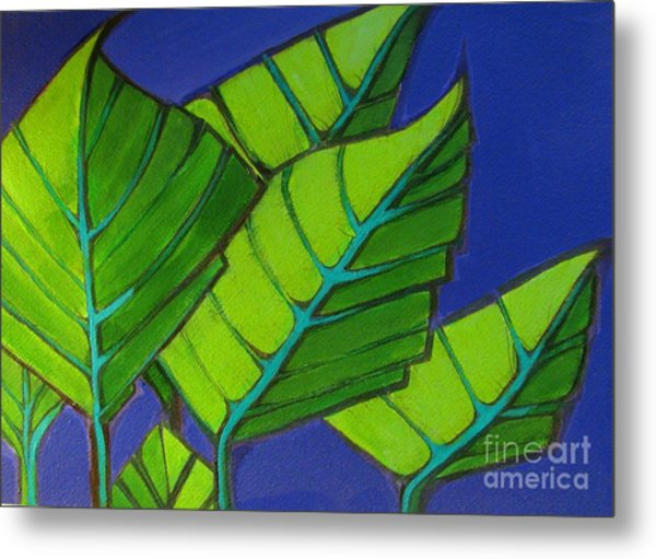 Hosta Blue Tip One Metal Print