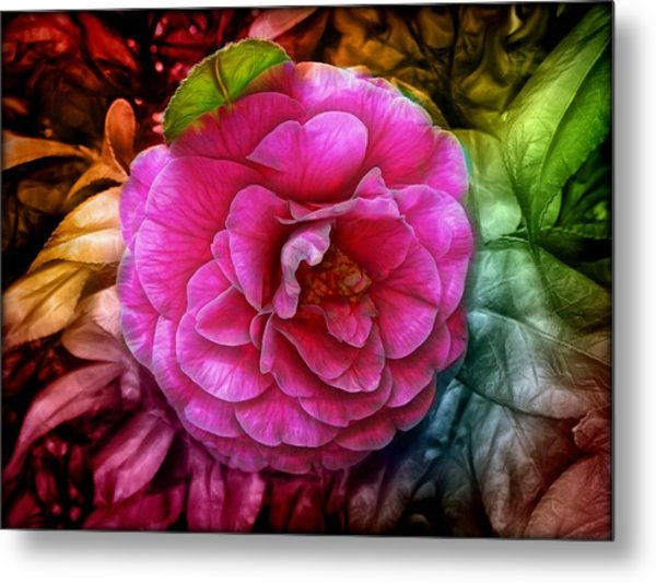 Hot And Silky Pink Rose Metal Print