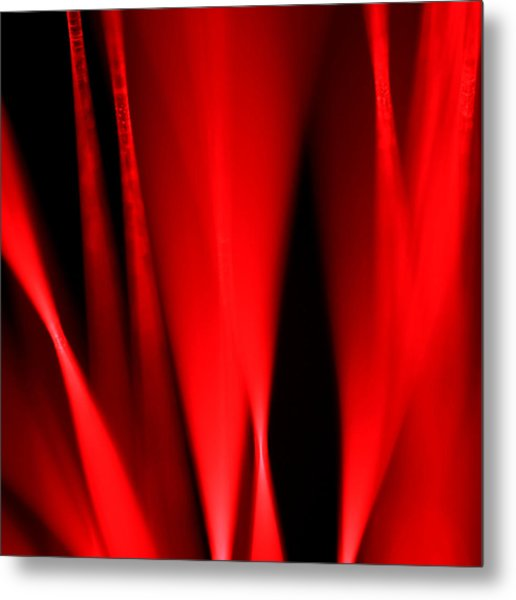 Hot Blooded Series Part 1 Metal Print