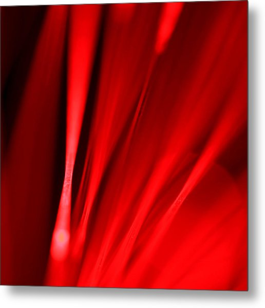 Hot Blooded Series Part 2 Metal Print