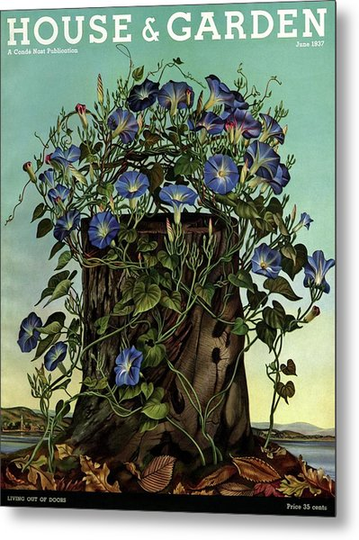 House And Garden Cover Featuring Flowers Growing Metal Print