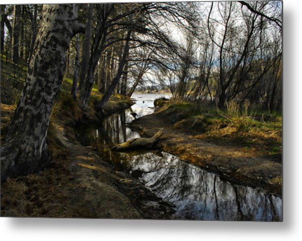 Houston Creek Metal Print