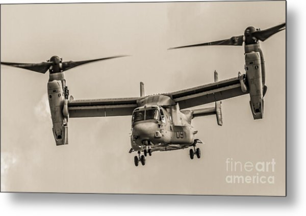 Hover Bw Metal Print