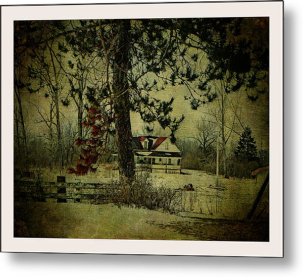 How Spring Came Metal Print by Dianne  Lacourciere