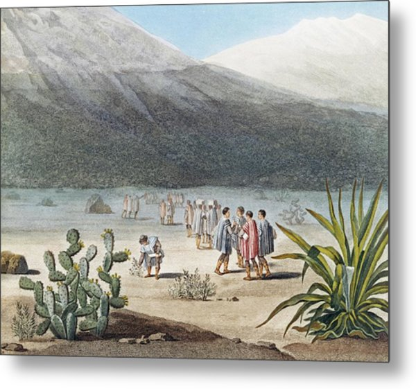 Humboldt In The Andes Metal Print