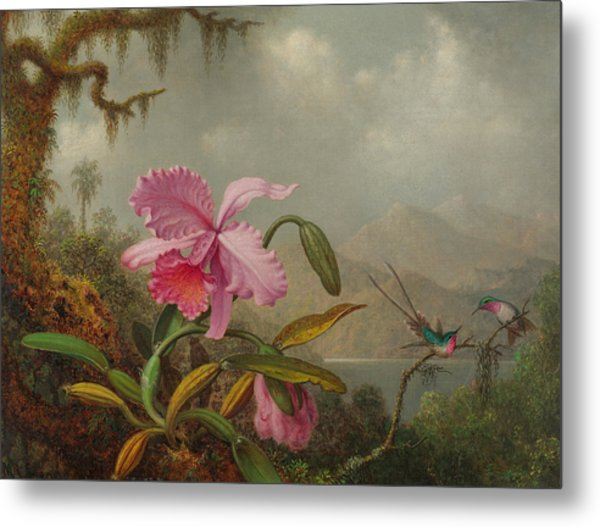 Hummingbirds And Orchids Metal Print