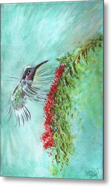 Hummingbird Bird Metal Print by Remy Francis