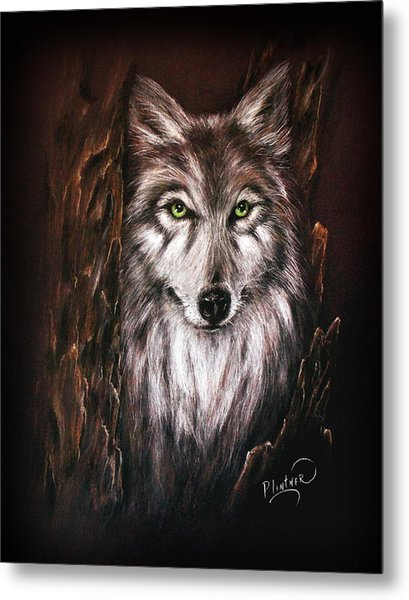 Hunter In The Night Metal Print