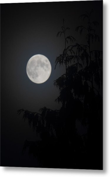 Hunters Moon Metal Print