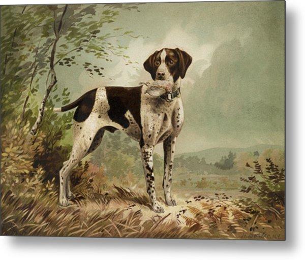 Hunting Dog Circa 1879 Metal Print