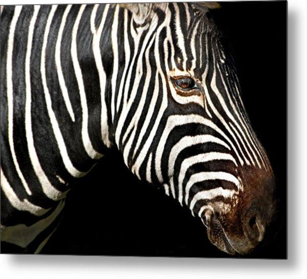 I Am A Zebra Metal Print