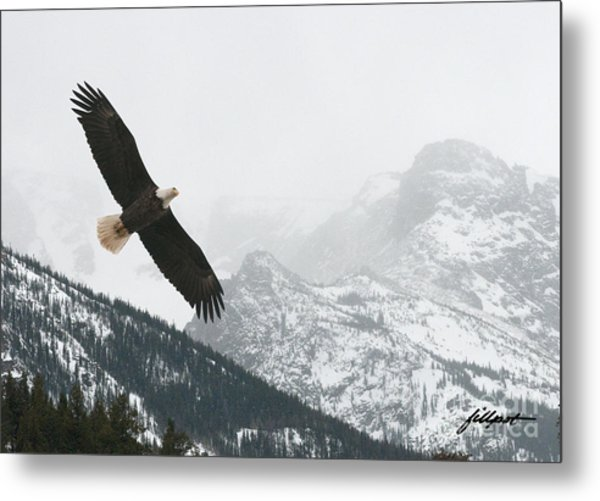 I Am The Eagle Metal Print