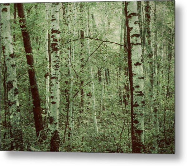 Dreams Of A Forest Metal Print