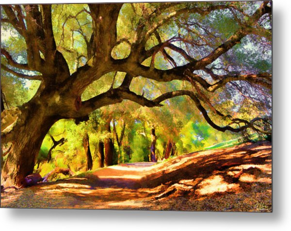 I Gave My Word To This Tree Metal Print