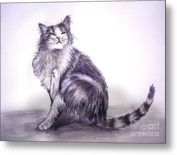 I Have An Itch Metal Print