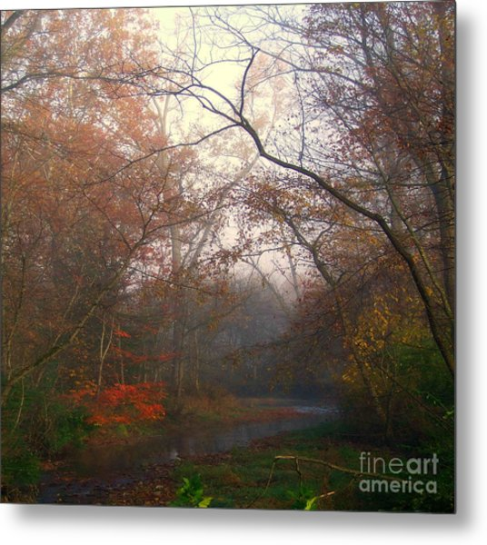 I Have Color Metal Print
