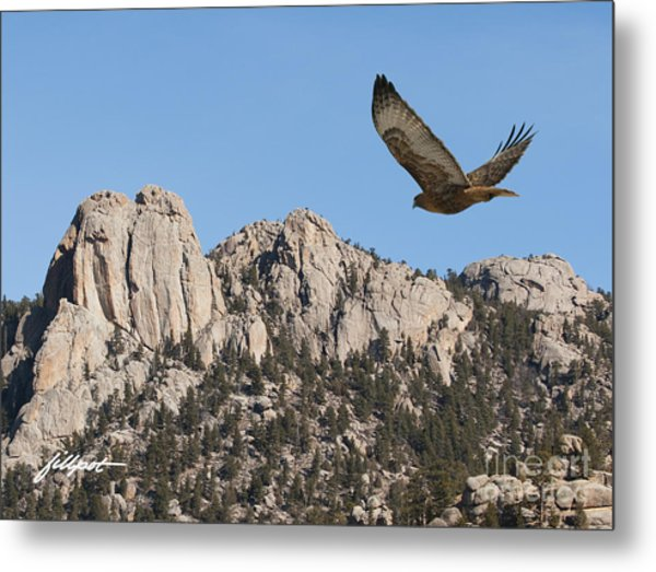 I Live In High Country Metal Print