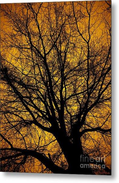 I Love Bare Trees Metal Print