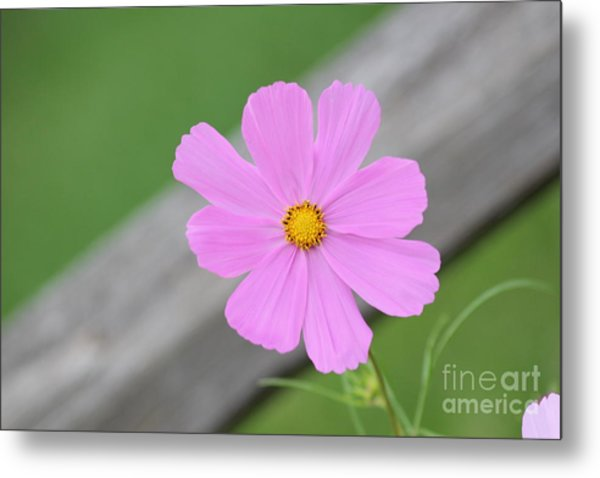 I Love You Flower Metal Print
