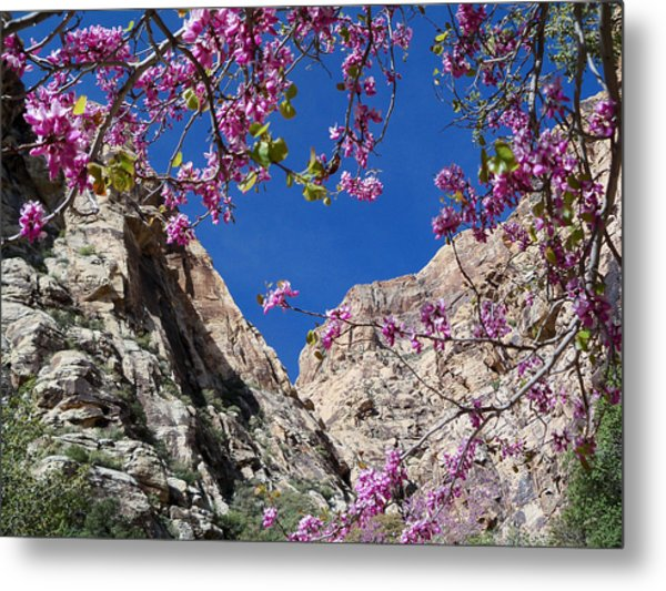 Ice Box Canyon In April Metal Print