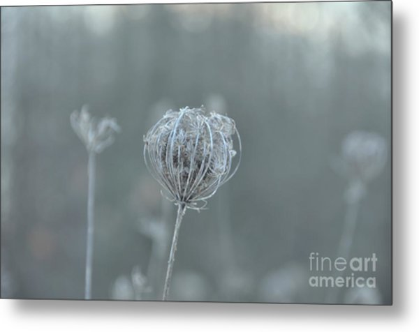 Ice Is In The Air Metal Print