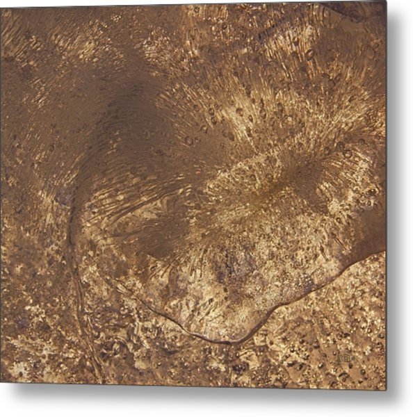 Ice Leaf Metal Print