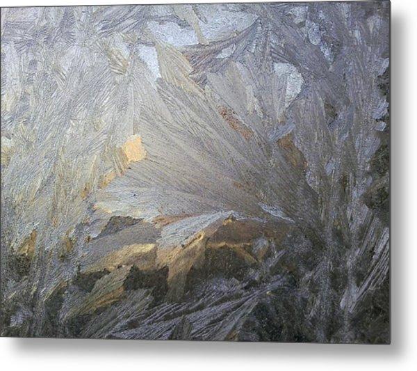 Ice Lily Metal Print by Jaime Neo