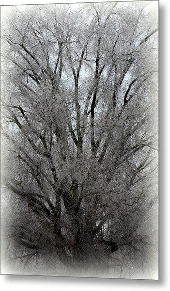 Metal Print featuring the photograph Ice Sculpture by Lisa Wooten
