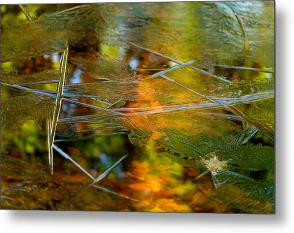 Iced Fall Metal Print