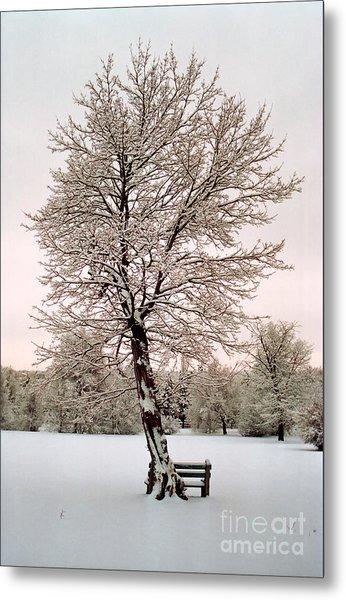 Icetree Metal Print