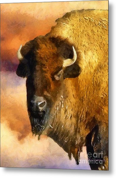Icon Of The Plains Metal Print