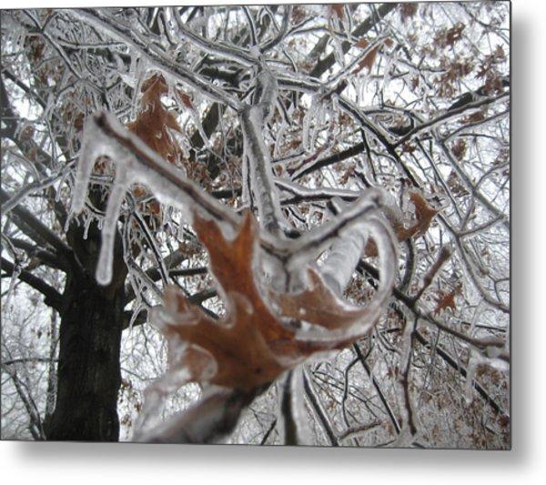 Icy Beckoning Metal Print