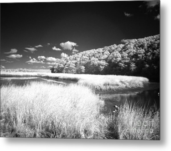 If 4 Metal Print by Alan Russo