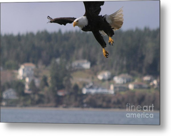 I'm Coming In For A Landing Metal Print