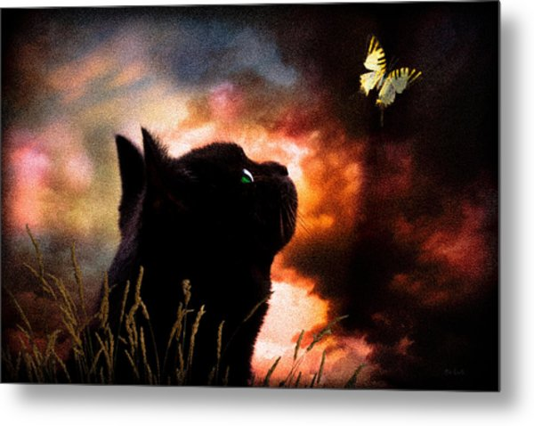 In A Cats Eye All Things Belong To Cats.  Metal Print