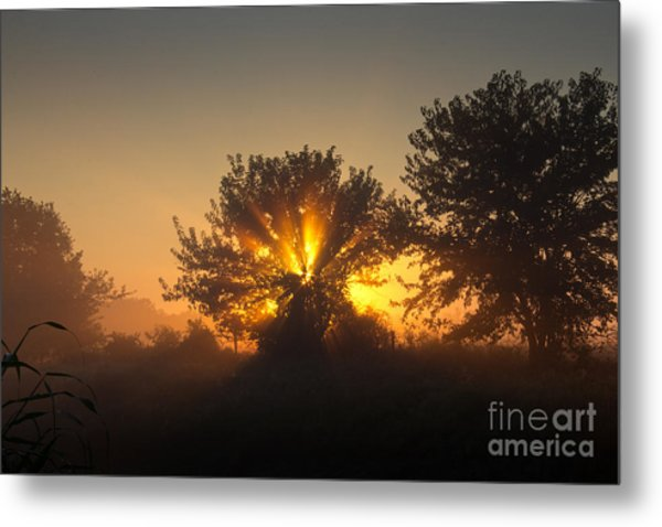 In A Silent Way Metal Print