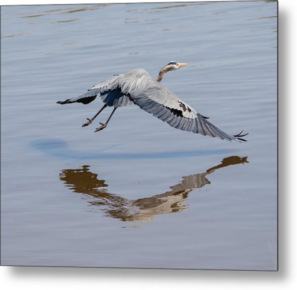 In Flight Music Metal Print