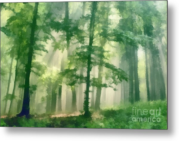 In Forest Metal Print by Odon Czintos