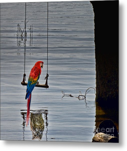 In Reflective Mood Metal Print