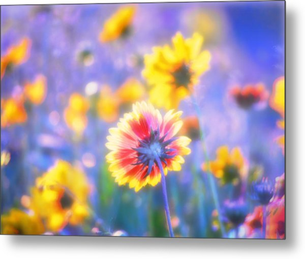 In Summer The Song Sings Itself Metal Print