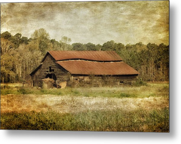 Metal Print featuring the photograph In The Country by Kim Hojnacki