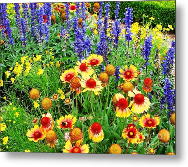 Metal Print featuring the photograph In The Garden by Cristina Stefan