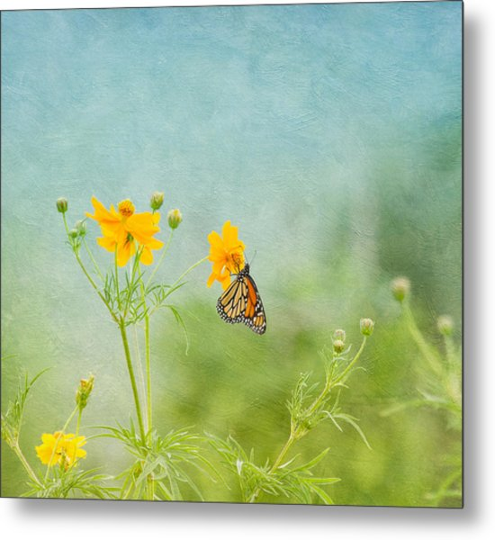 In The Garden - Monarch Butterfly Metal Print