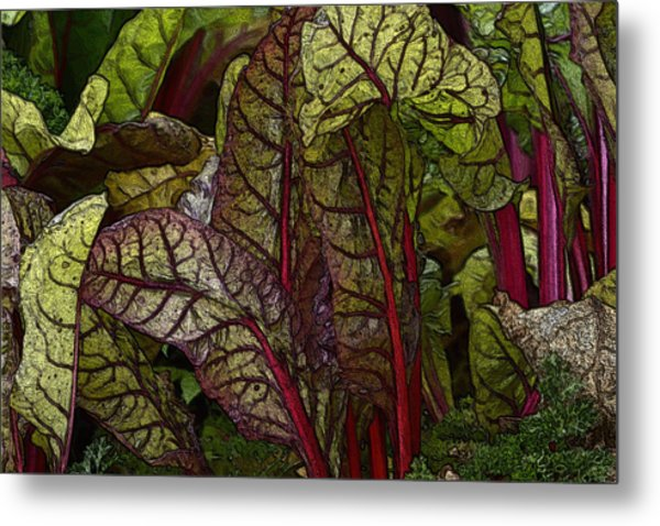 In The Garden - Red Chard Jungle Metal Print