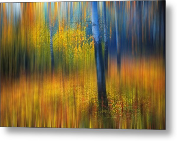 In The Golden Woods. Impressionism Metal Print