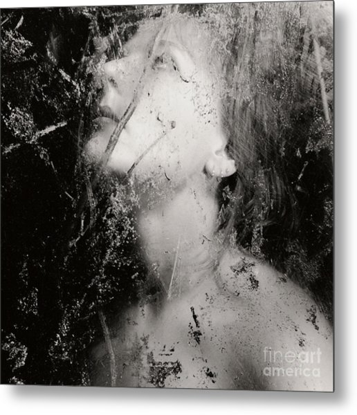In The Light Metal Print by Sharon Kalstek-Coty