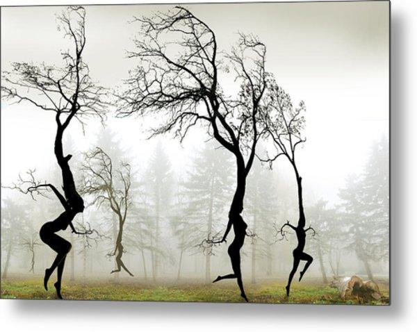 In The Mist Metal Print by Igor Zenin