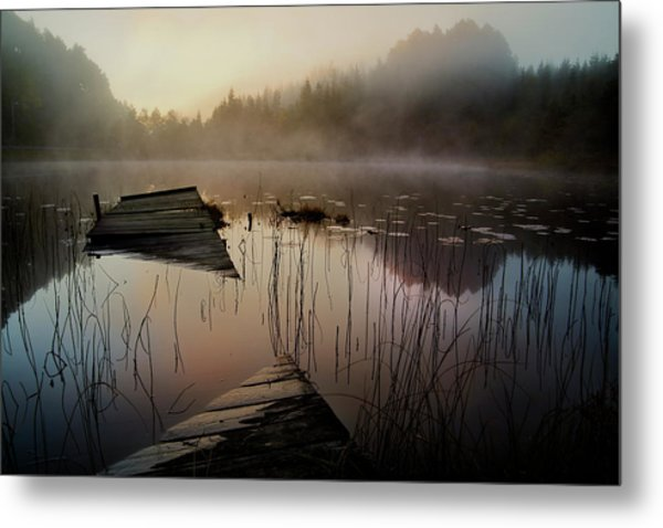 In The Misty Morning Metal Print