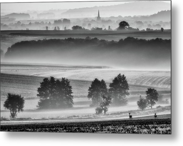 In The Morning Metal Print